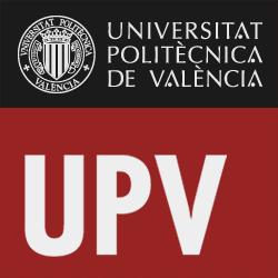 Marek Kwiek  at the Universidad Politechnica de Valencia seminar